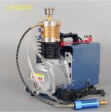 Best quality OEM 4500 PSI PCP Electric Air  compressor